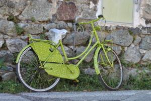 Zdrowie, a jazda na rowerze